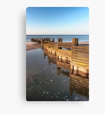 Norfolk groyne Canvas Print