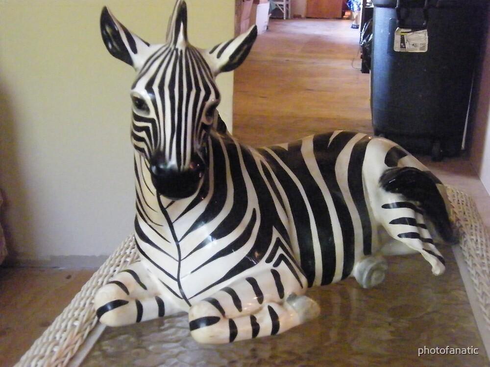 zebra art by photofanatic