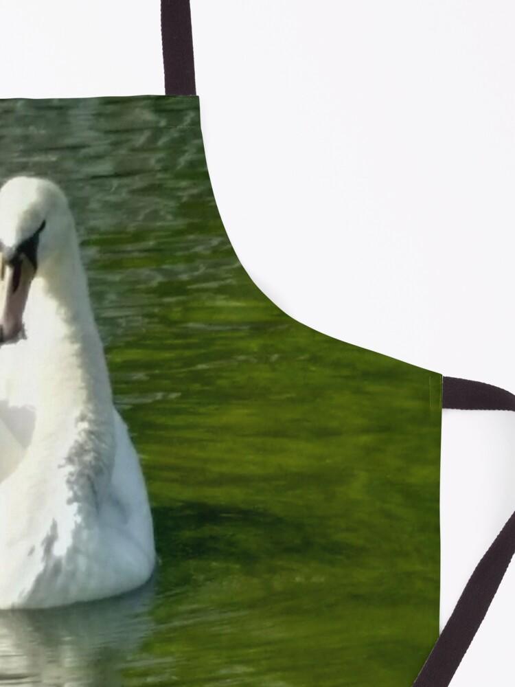 Alternate view of M.I. #48  ☼  Swan - Shot 6 (Pearson Park) Apron