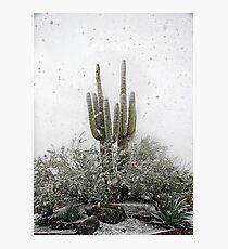 Arizona Snowstorm Photographic Print
