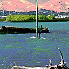 Wind Surfing off Sherman Island by Joseph  Coulombe