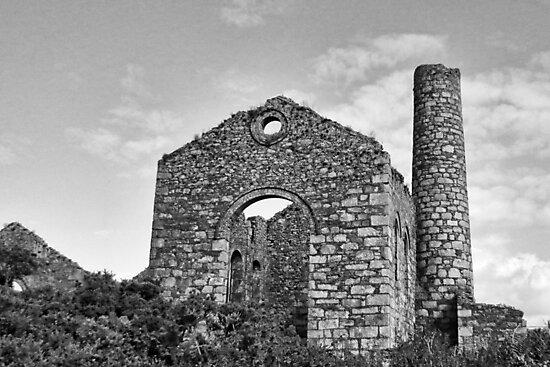 Cornish Tin Mine by lynn carter