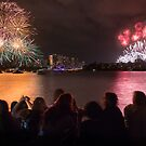 Sydney New Year's Eve Fireworks by Dev Wijewardane