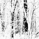 Fall,O fall, Thou Snow So Downy by paintingsheep