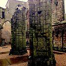 Holyrood Palace, Edinburgh by Robert Steadman