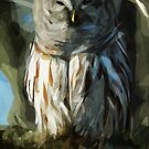 Wild Barred Owl Abstract Impressionism by pjwuebker