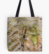 Yellow-striped Hunter (Austrogomphus Guerini) Dragonfly Tote Bag