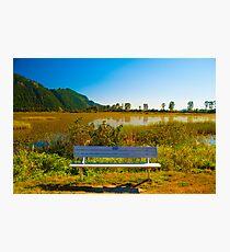 Random Bench Photographic Print