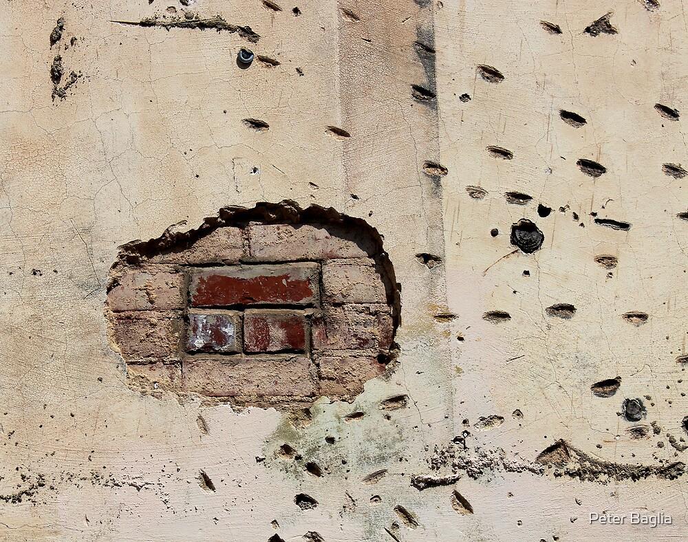 Battle Scars by Peter Baglia