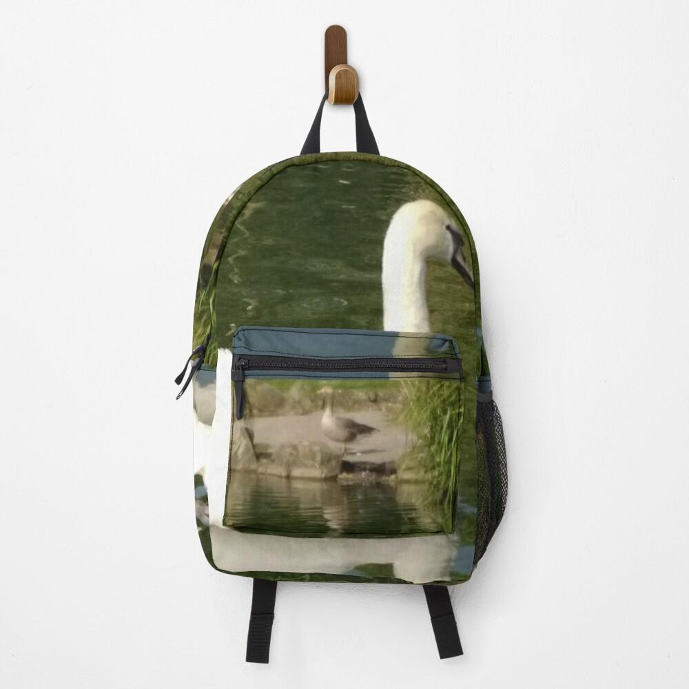 M.I. #63 |☼| Swan - Shot 21 (Pearson Park) Backpack