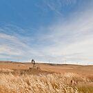 Windmills - South Australia by pennyswork