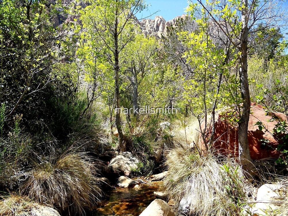 The Desert Creek  by markellsmith