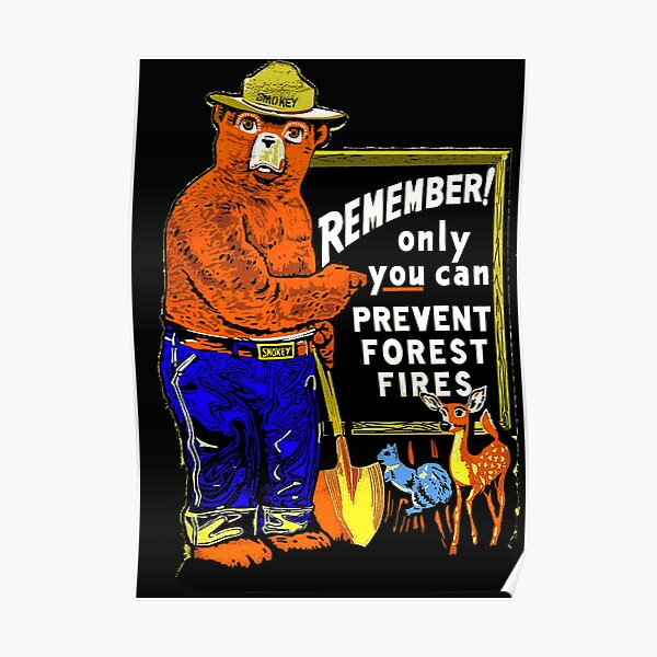 Smokey the bear - only you can prevent forest fires Poster