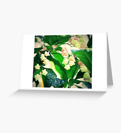 Soft Little Flowers Greeting Card