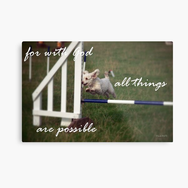 Poodle Agility Dog Scripture Art For with God all things are Possible Metal Print