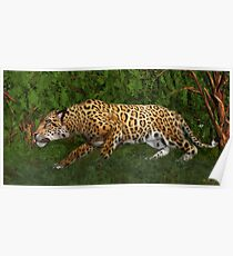 Jaguar Stalking Prey Poster