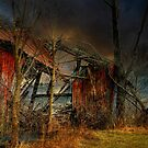 End Times by Lois  Bryan