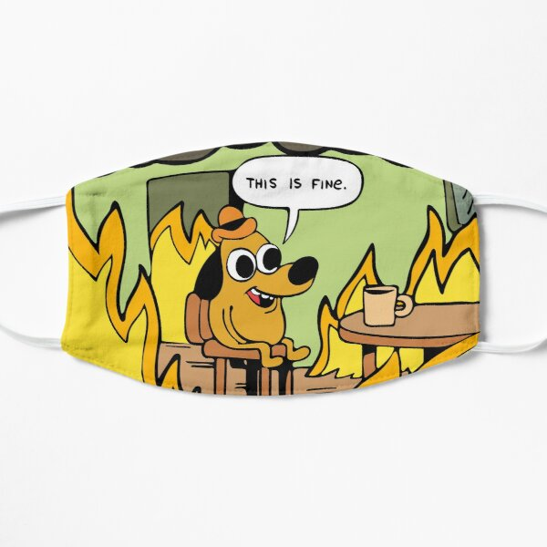 This is fine. Mask