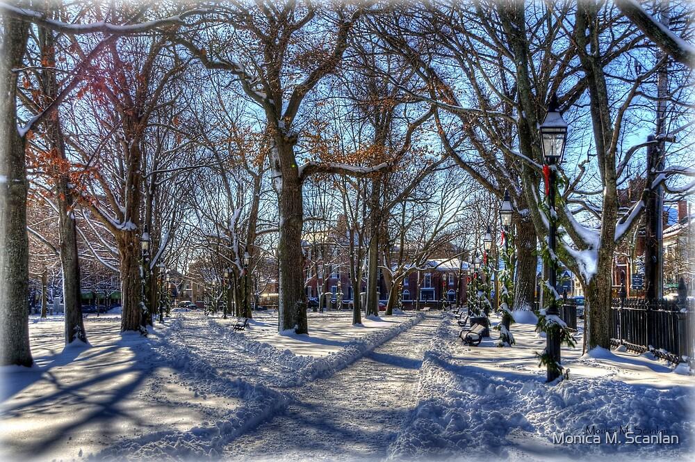 Salem Common  by Monica M. Scanlan