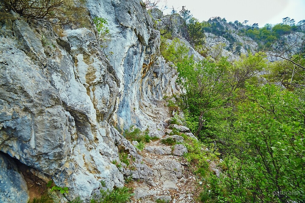 Rocky trail on mountains by naturalis