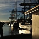 Tall Ships in Hobart Harbour by Bryan Cossart