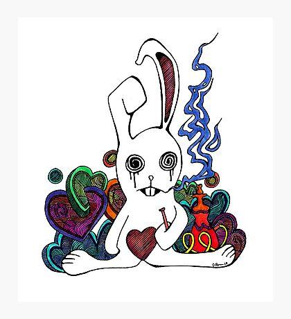 Hookah Smoking Rabbit Photographic Print