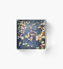 Autumn leaves Acrylic Block