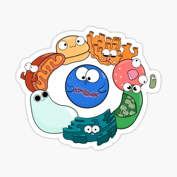 Cell Organelle Friendship Circle Sticker