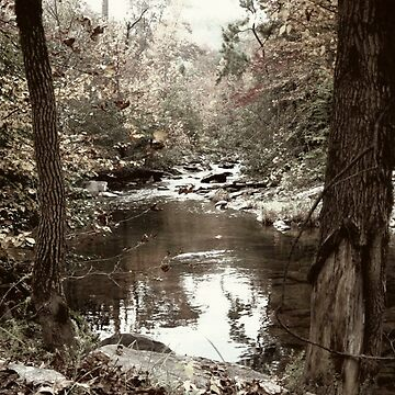 Ole dirt creek by fem-rage-