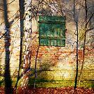 Old Farmhouse near Berlin by Imi Koetz