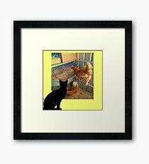 domestic hen Framed Print