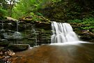 Summer Green Surrounds Cayuga Falls by Gene Walls