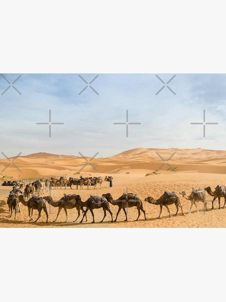 Camel Caravan in the Sahara Desert, Morocco by wanderingfools