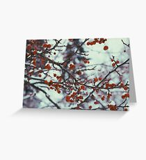 Miniature, Red, Cherries. A Hopeful Thought Greeting Card