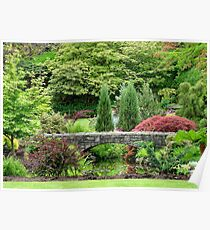 Bridge in Queen Elizabeth Park Poster