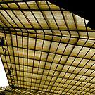 The roof, Twickenham by Robert Steadman