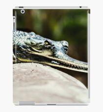 Pierce iPad Case/Skin