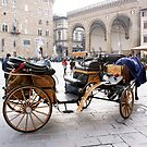 Firenze Piazza Signoria(Italy) by bertipictures