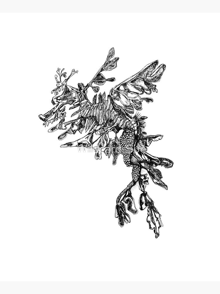 Steve the Leafy Sea Dragon by Wildcard-Sue