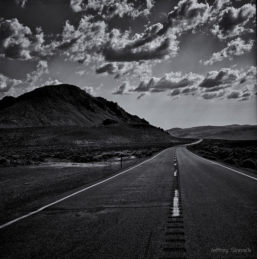 Going Home by Jeffrey  Sinnock