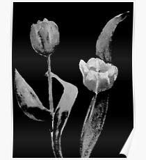 Artsy Tulips Poster