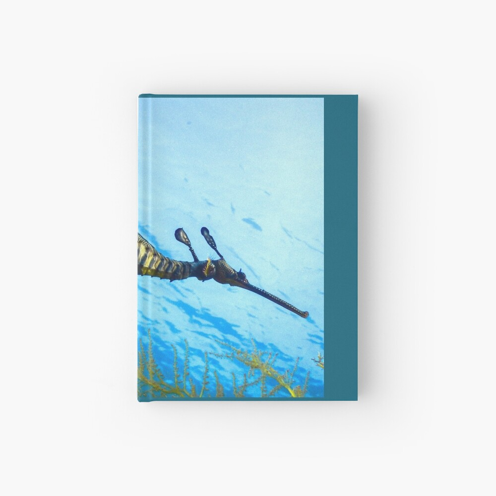 Weedy Seadragon with eggs under the sea Hardcover Journal