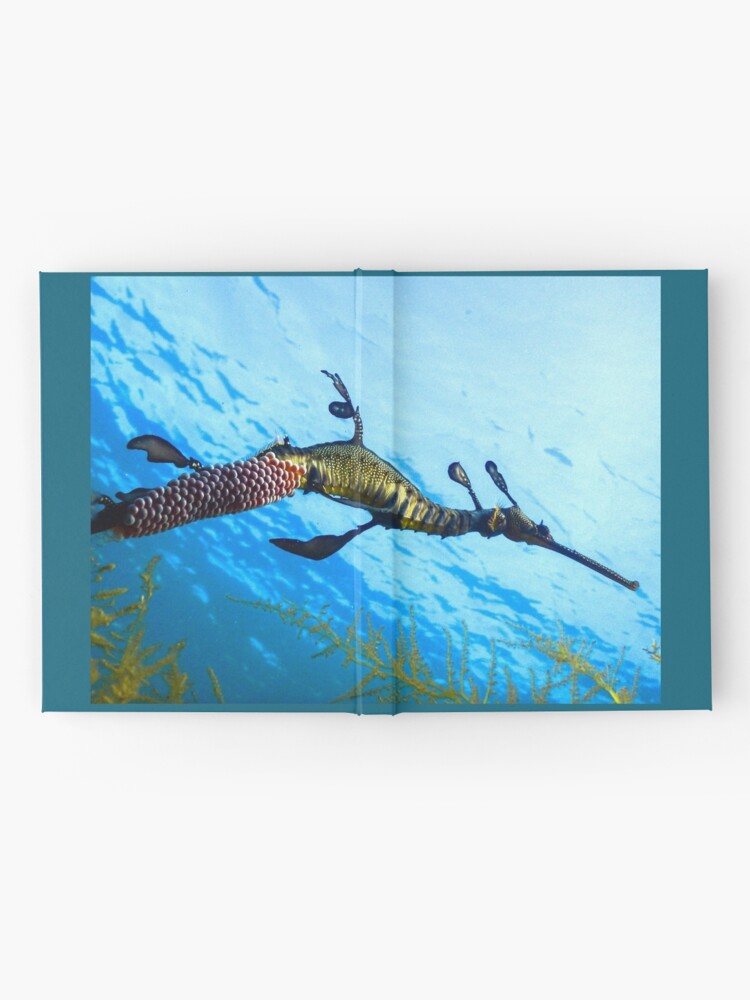 Alternate view of Weedy Seadragon with eggs under the sea Hardcover Journal