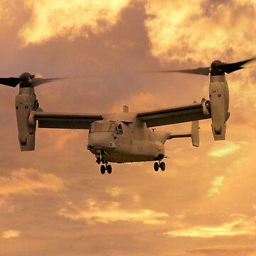 Osprey by aviationart