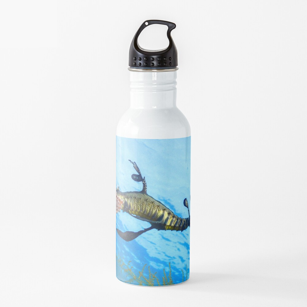 Weedy Seadragon with eggs under the sea Water Bottle