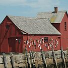 Rockport 1 by telley20