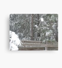 snowy fence Canvas Print