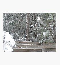 snowy fence Photographic Print