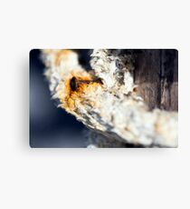 A consummate and corroded rusty nail Canvas Print