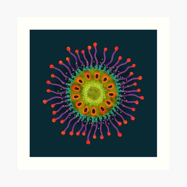 Fruit Salad Fruit Art Print